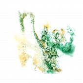 image of insults  - Abstract watercolor green - JPG