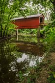 picture of covered bridge  - Historic Burr arch covered bridge reflects beautifully in peaceful Sugar Creek in Glenarm - JPG