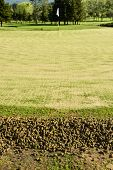 foto of aeration  - A pile of cores from the aeration process on the side of a green - JPG