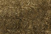 stock photo of hay bale  - Stack of golden Hay bale background image - JPG
