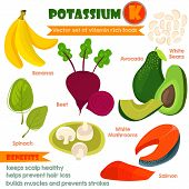 stock photo of food  - Vitamins and Minerals foods Illustrator set 3 - JPG