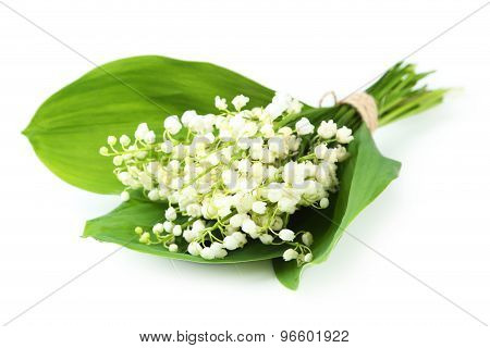 Lily Of The Valley With Leaves Isolated On White