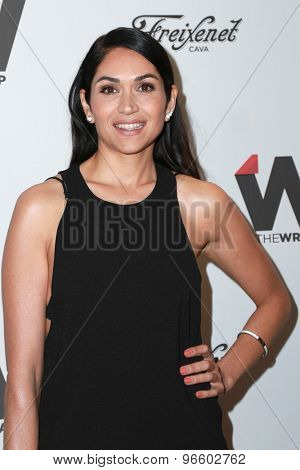 LOS ANGELES - JUN 11:  Lela Loren at the TheWrap's 2nd Annual Emmy Party at the London Hotel on June 11, 2015 in West Hollywood, CA