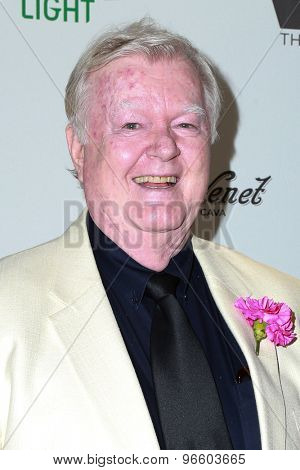 LOS ANGELES - JUN 11:  Robert Michael Morris at the TheWrap's 2nd Annual Emmy Party at the London Hotel on June 11, 2015 in West Hollywood, CA