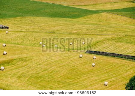 View Of Rural Landscape Field Meadow, Germany