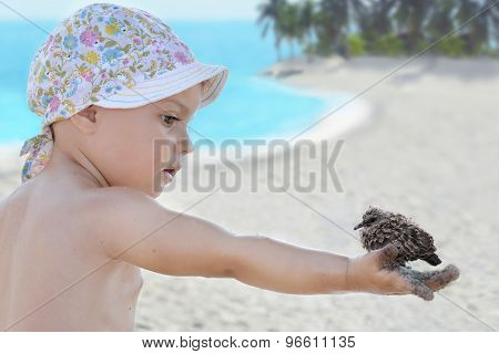 baby on the tropical beach