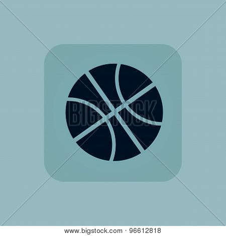 Pale blue basketball icon