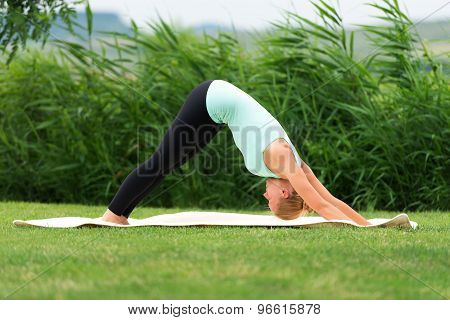 Woman Holding A Downward Facing Dog Pose
