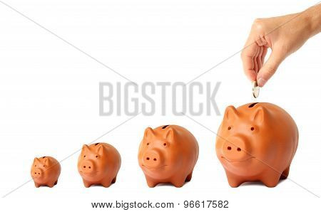Growing Investment Piggy Bank