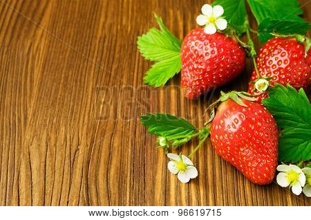 Fresh Ripe Strawberry With Leaves And Blossom