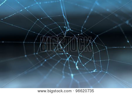 Cobweb With Dew Drops