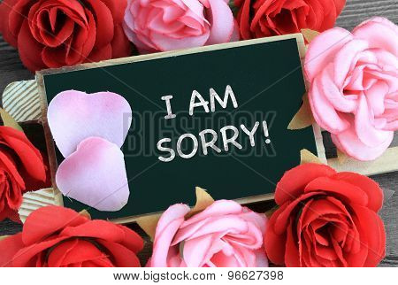 sign showing I am sorry message