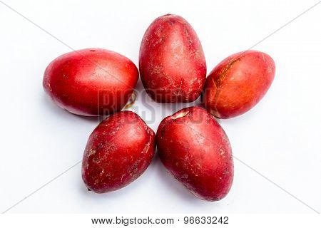 Closeup of freshly plucked date palm fruits kept on a plain background