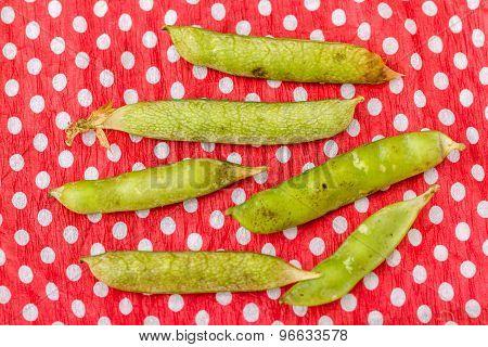 Fresh Green Pods