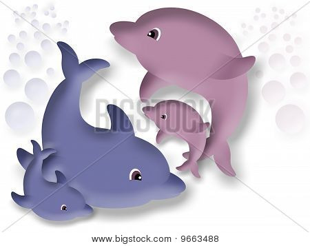 Family of dolphins