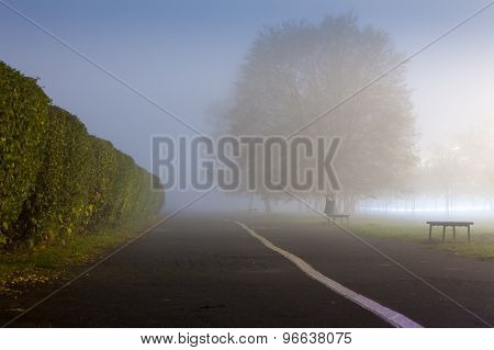 An Urbanized Path During Misty Weather