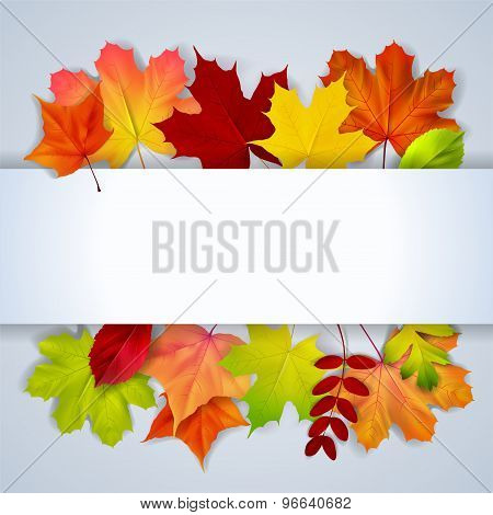 Bacground With Olorful Autumn Leaves And Place For Text