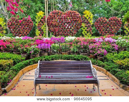 Beautiful Colorful flowers background