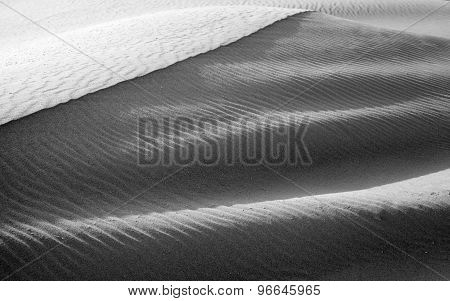 Fuerteventura, Canary Islands, Dunes Of Corralejo