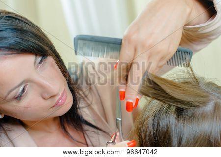 Hairdresser busy in her salon