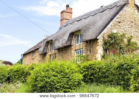 Traditional old Cotswold stone cottage with thatched roof and front garden overgrown with green shru