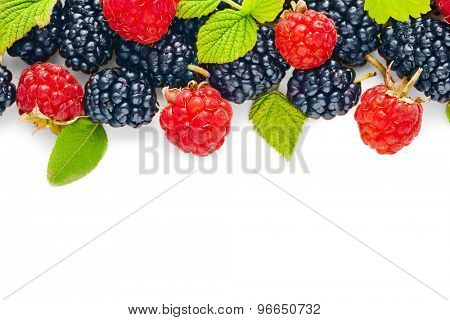 Raspberry and blackberry with green leaves isolated on white
