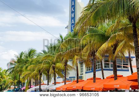 Coconut trees and hotels along the ocean coast at south Miami beach