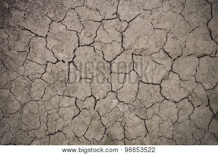 Drought Floor