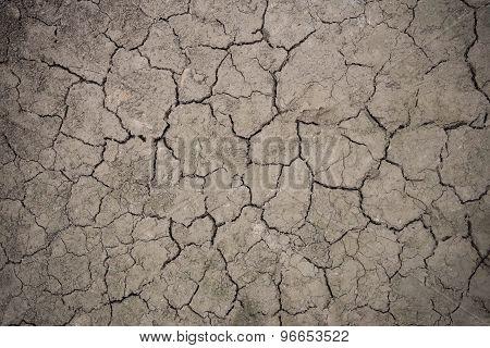 Drought Floor