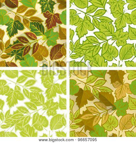 Spring leaves seamless pattern set