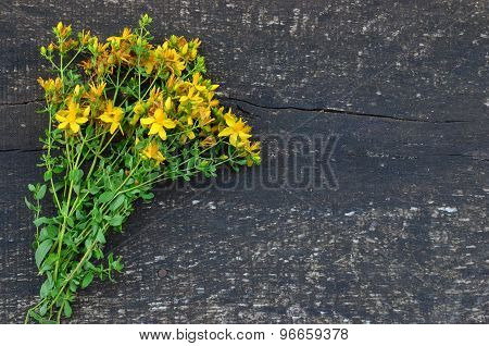 Sheaf Of St. John's Wort