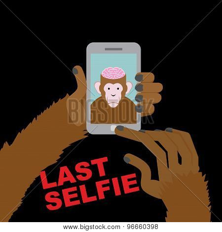 Last Selfie Before His Death. Selfie Monkey With An Open Skull And Pink Brains. Monkey Brains A Deli