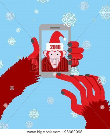 New Year Selfie. Monkey Hooded Santa Claus Makes A Photo On A Smartphone. On A Blue Background With