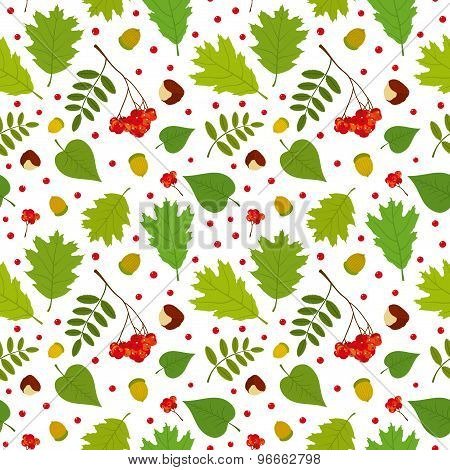 Forest seamless pattern with rowan berries, leaves, acorn, chestnut. Vector set. White background.