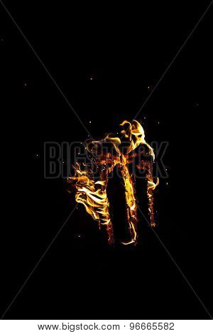 Image of hot log with flame