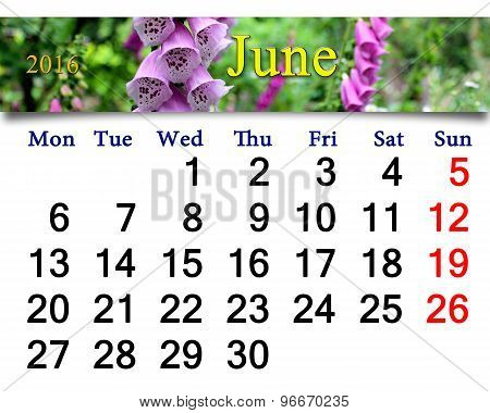 calendar for May 2016 with lilac bluebells
