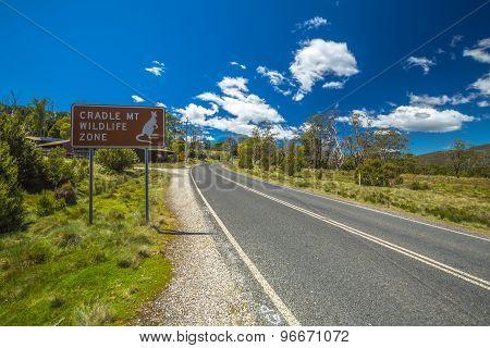 Cradle Mountain Wildlife Zone
