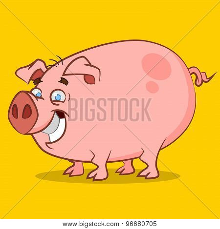 funniest pig.