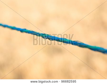Tightrope Blue