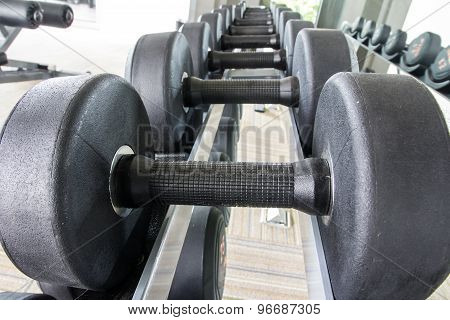 Rows Of Dumbbell