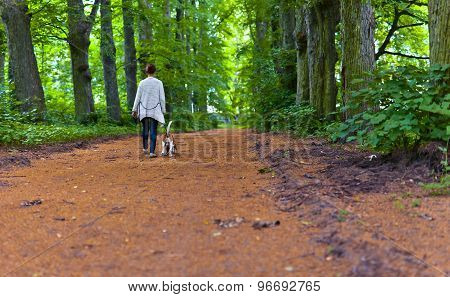 Woman With Beagle Walking In The Park