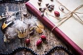 picture of pine nut  - Corded book with beads dogrose pine nuts and earrings with feathers - JPG