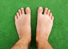 picture of foot  - Foot on green grass - JPG