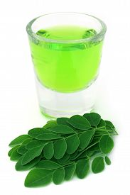 pic of moringa oleifera  - Moringa leaves with extract in a glass over white background - JPG