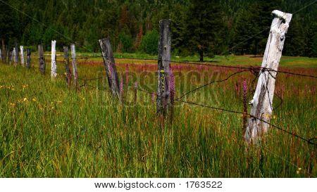 Idaho Fence