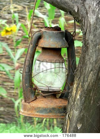 Worn Lamp On The Tree