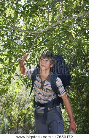 Teenage boy (13-15 years) walking in forest, carrying backpack