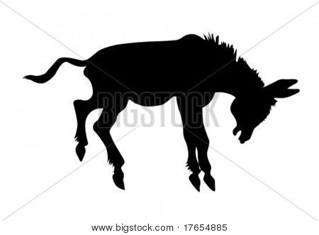 vector silhouette stubborn ass on white background