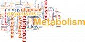 image of enzyme  - Background concept wordcloud illustration of Metabolism metabolic - JPG