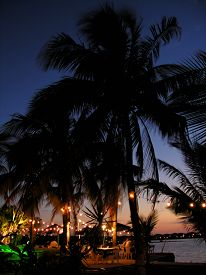 stock photo of beach party  - celebration on a tropical beach at night